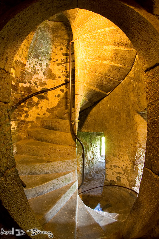 stairways to on pinterest castles staircases and